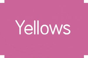 YELLOWS - GOLDS