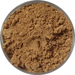 Tan Golden Mineral Foundation
