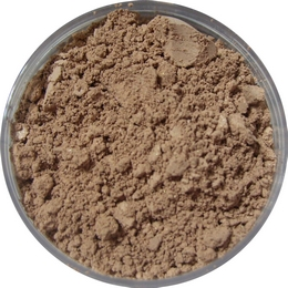 Rosy Medium Mineral Foundation
