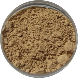 Natural Medium Mineral Foundation