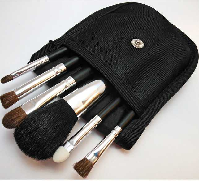6 Piece Pro Travel Brush Set with Case For Mineral Makeup