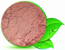 FRILLY ALOE MINERAL BLUSH